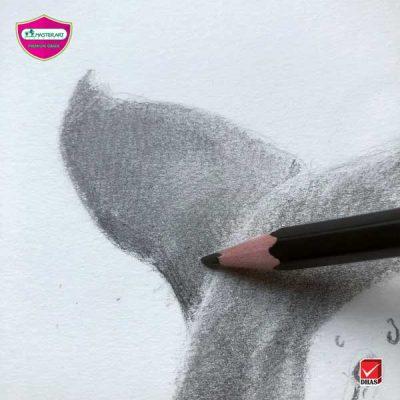 Master Art ดินสอดำ ปลาวาฬ